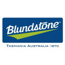 Blundstone 319 Zip Safety Boot