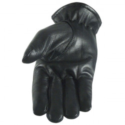 Blue Eagle Lined Leather Glove