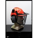 Honeywell Forestry Hard Hat